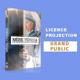 licence-mere-teresa